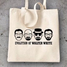 Breaking Bad Evolution Walter White