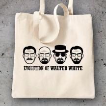 Breaking Bad Evolution Walter White